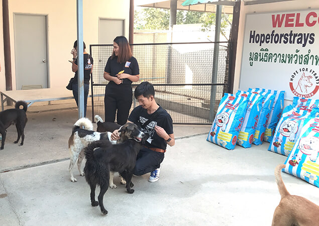 Hope For Strays Foundation Dog Food Donation Pattaya